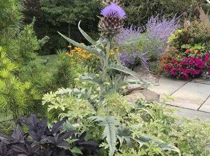 Ashwood Flower Planting Design